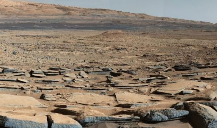 Could microbes survive on the surface of the Red Planet?