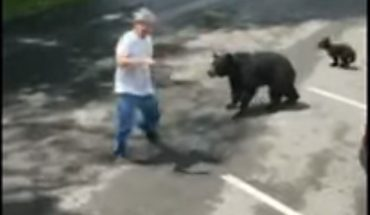 Video shows bear charging man who comes within feet of cubs in Tennessee