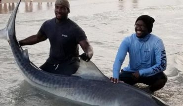 Andrew and Stephen Seaborn, pictured, of Team Seaborn Fishing proudly nabbed a female tiger shark measuring 11 feet, 11 inches while fishing off of Bob Hall Pier inCorpus Christi, Texas, on Sunday.