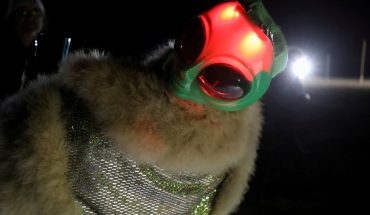 'Storm Area 51' in pictures