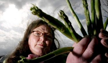 """Jemima Packington, 64, reportedly the world's only """"asparamancer,"""" says she is able to see the future by throwing asparagus into the air."""