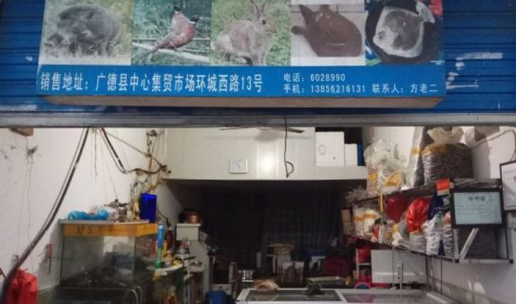In this Jan. 9, 2020, photo provided by the Anti-Poaching Special Squad, the exterior of a store suspected of selling trafficked wildlife is seen in Guangde city in central China