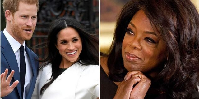 TMZ headman Harvey Levin told Fox News Prince Harry's previous work with Oprah Winfrey positions himself for success in the media spectrum.