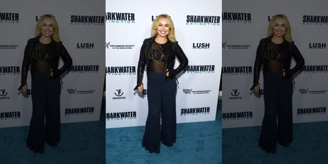 """Hayden Panettiere arrives at a screening of Freestyle Releasing's """"Sharkwater Extinction"""" at the ArcLight Hollywood on January 31, 2019 in Hollywood, California <a class="""